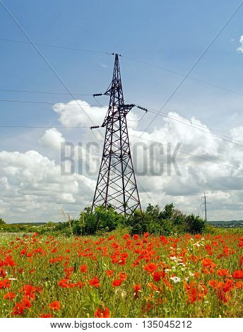 High voltage powerline transmission tower in field with poppies(power supply ukrainian oblenergo sale)
