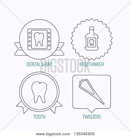 Mouthwash, tooth and dental x-ray icons. Tweezers linear sign. Award medal, star label and speech bubble designs. Vector