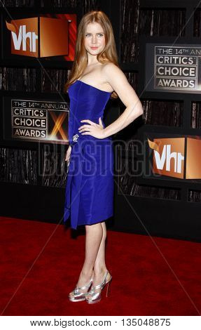 Amy Adams at the VH1's 14th Annual Critics' Choice Awards held at the Santa Monica Civic Auditorium in Santa Monica, USA on January 8, 2009.