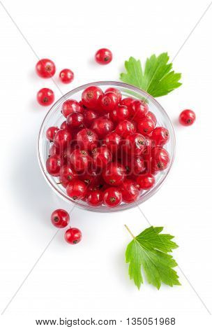 Ripe Fresh Red Currants