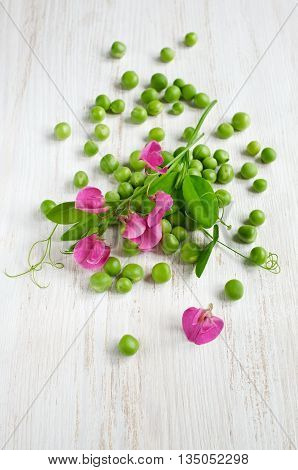 Green Peas With Pink Blossom