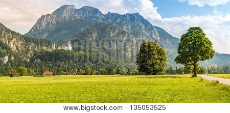 Neuschwanstein castle in Beautiful summer romantic road view Fussen Bavaria, Germany panorama