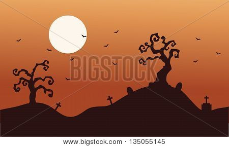 Silhouette of halloween dry tree and bat at afternoon