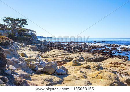 Beach. Carmel, California
