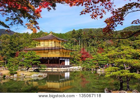 Kinkakuji Temple At Autumn, Kyoto