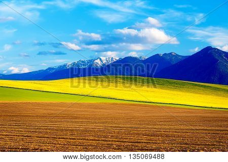 Beautiful spring plowed field and green and yellow meadow. Mountain in background. Slovakia Central Europe Liptov. Mountain High Tatry
