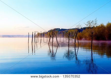 Beautiful Lake With Mountains In The Background At Sunrise. Tree