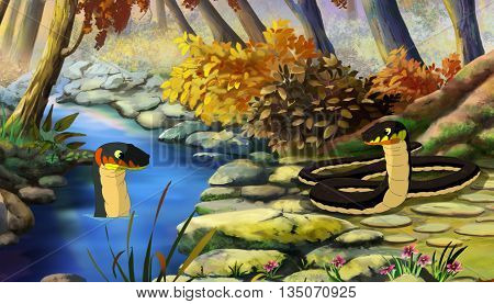 Two Dice Snakes (Natrix Tessellata) on Water and on the River Bank. Digital painting cartoon style full color illustration.