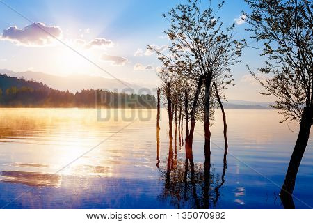 beautiful lake view in morning fog with mystic mountains and trees as leftovers of a mole in gold purple - blue tones. Slovakia Central Europe region Liptov