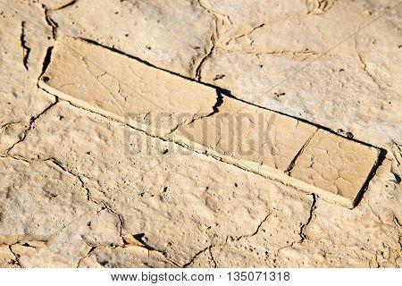 Brown Dry Sand  Sahara Wood