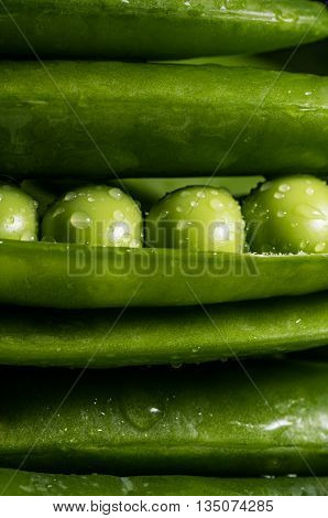 The image of fresh pea pod covered with water droplets close-up