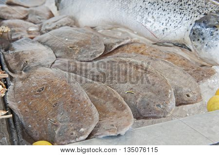 Collection Of Fresh Plaice In Seafood Restaurant