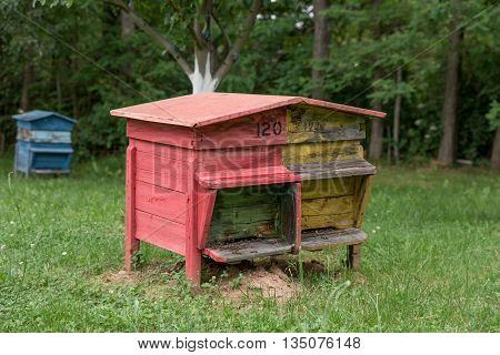 Colourful beehive with bees in a honey farm