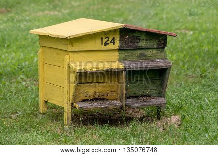 Colourful beehive.Beehive with bees in a honey farm