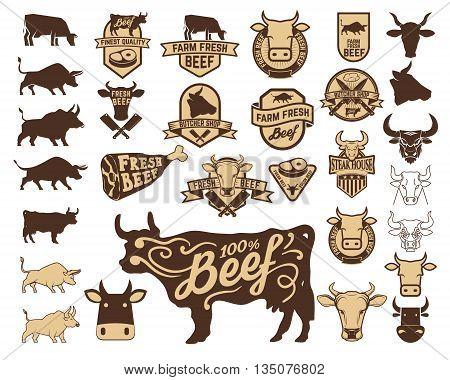 Set of the fresh beef logo. Cow icons. Butchery labels. Design elements for logo label emblem sign.