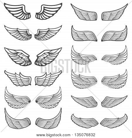 Set of vintage wings isolated on white background. Design element for logo label emblem sign badge. Vector illustration.