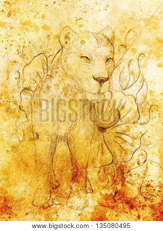 Lioness With Flower, Pencil Drawing On Paper. Color Effect And Computer Collage.