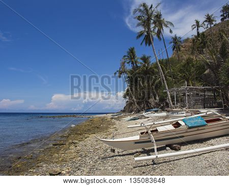 The boat on the beach, Apo island, Philippines. White catamaran on white sand by the sea.