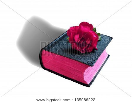 old non-canonical branch bible rose on it