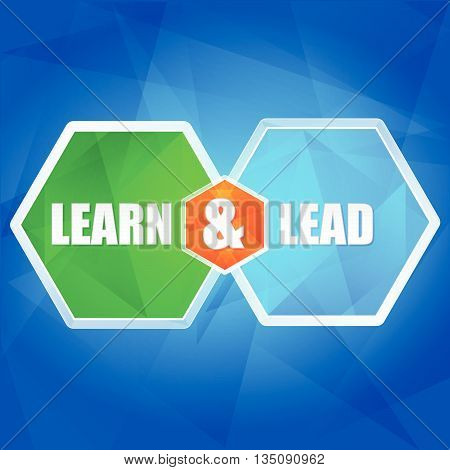 learn and lead - business education concept words in color hexagons over blue background, flat design, vector