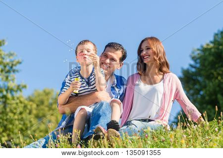 Family sitting on meadow playing with soap bubbles