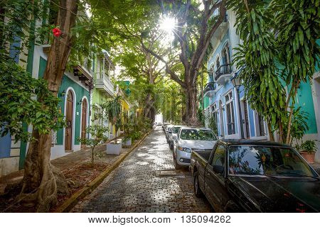 Beautiful street full of trees in old San Juan Puerto Rico