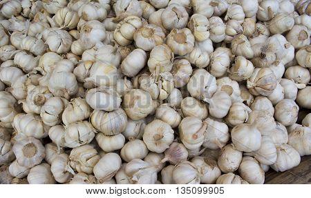Garlic pile for background, garlic mound on market