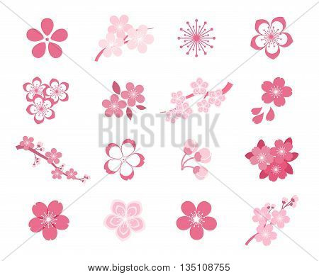 Cherry blossom japanese sakura vector icon set. Nature japanese cherry, spring floral sakura, blossom flower sakura, icon sakura illustration