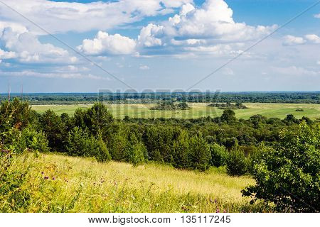 panoramic view of green fields, forest and sky