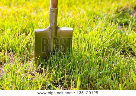 Shovel in the grass on the background of the setting sun. Bright gardener tools for garden care.