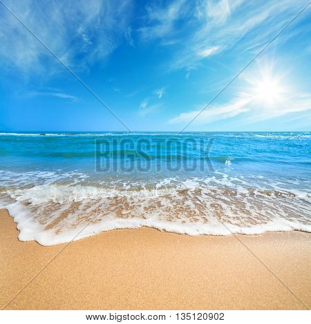 Summer Landscape - Relax on the Paradise Beach, Blue Sea and Clean Sand with copy space