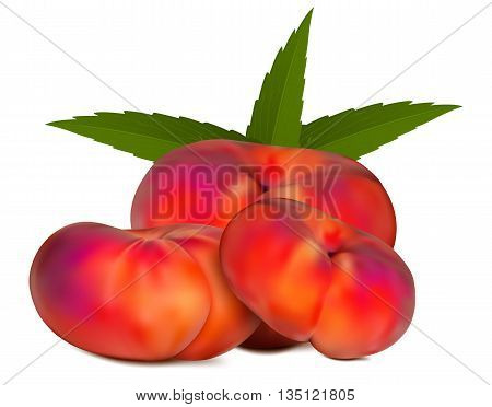 Isolated Chinese peach with leaves, vector art illustration.