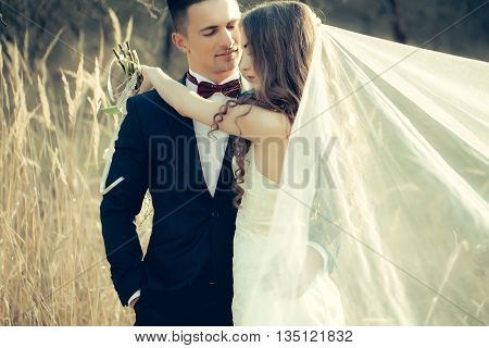 Wedding Embracing Couple