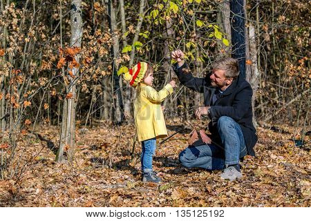 Father Playing with Little Baby Daughter in Autumnal Forest Looking on Colorful Leaves Casual Clothing Sunny Day