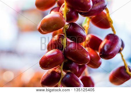 Clouse up the fresh Red Dates Fruit