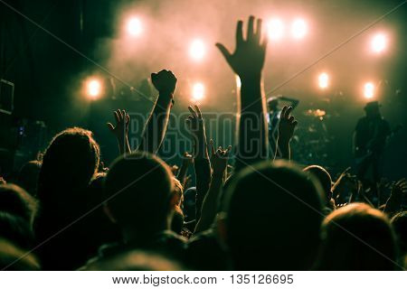 Festival crowd raising their hands in the air.