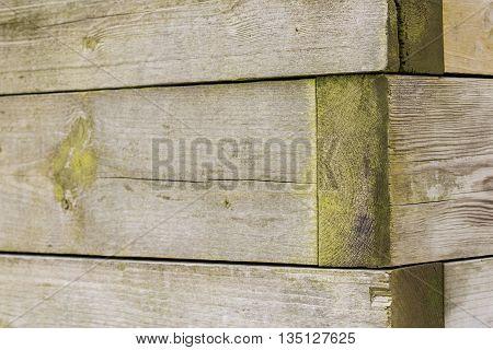 Planter Box Corner Right in outdoor park