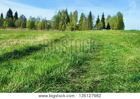 Country road in green field of grass background