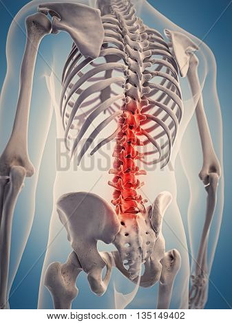 3d rendered, medically accurate 3d illustration of the highlighted spine