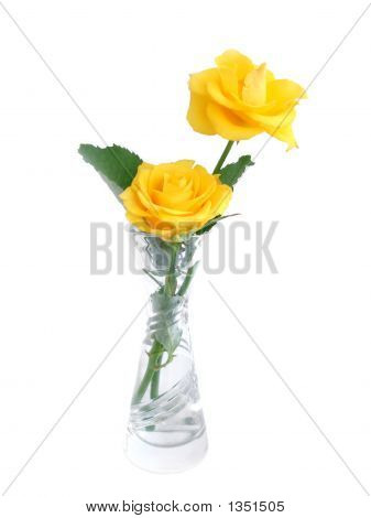 Bouquet Of Yellow Roses In A Vase Over White