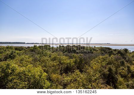 landscape at Hiddensee island in summer with blue sky