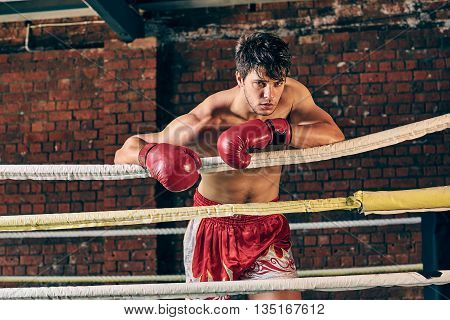 Man Training Gym Boxing Mma Ring Shadow Boxing Mixed Martial Arts Fitness On Ropes