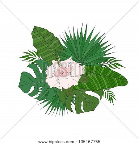 The set of leaves of different species of palm trees and hibiscus flower on a white background.