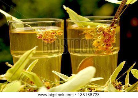 Fresh healthy linden tea and linden flower