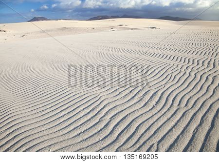 Northern Fuerteventura, Canary Islands, Nature Reserve Dunes Of Corralejo