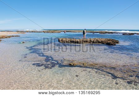 KALBARRI,WA,AUSTRALIA-APRIL 21,2016: Tourists wading in the rock pools and snorkelling at the Blue Holes beach reef in the clear Indian Ocean waters in Kalbarri, Western Australia.
