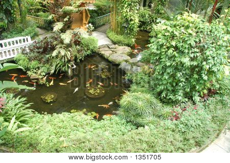 Garden With Koi Ponds3