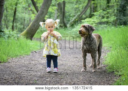 Beautiful Little Girl Walking With Her Dog