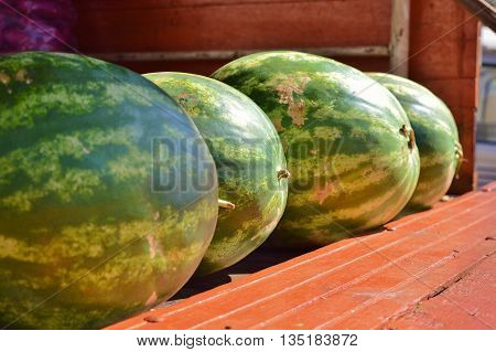 Watermelon for Sale in a Local Market