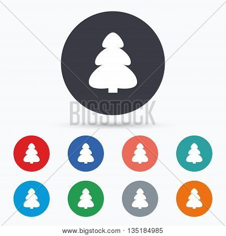 Christmas tree sign icon. Holidays button. Flat christmas tree icon. Simple design christmas tree symbol. Christmas tree graphic element. Circle buttons with christmas tree icon. Vector